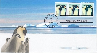 Penguins  Via Cachet